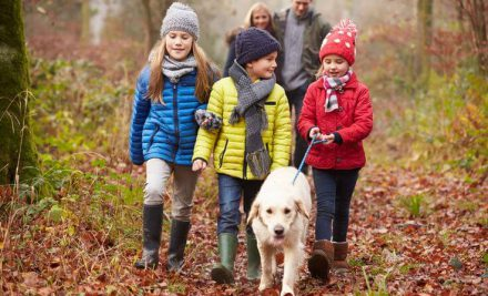 Top 5 free things to do with kids
