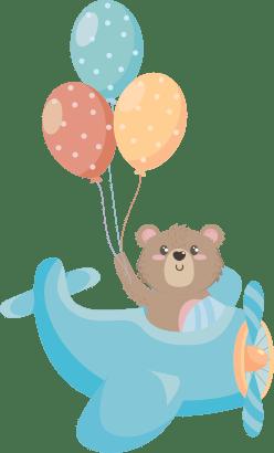 bear-on-the-plane
